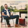 Walker Hayes - Fancy Like mp3 download