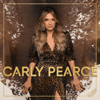 Download lagu Carly Pearce & Lee Brice - I Hope You're Happy Now