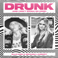 download lagu Elle King & Miranda Lambert - Drunk (And I Don't Wanna Go Home)