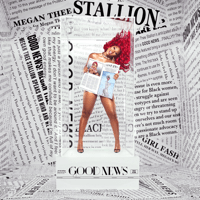 download lagu Megan Thee Stallion - Body