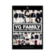 2NE1 & LEE HI - IF I WERE YOU (from YG FAMILY WORLD TOUR 2014 -POWER- in Japan)