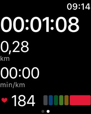 Runtastic PRO GPS Laufen Screenshot