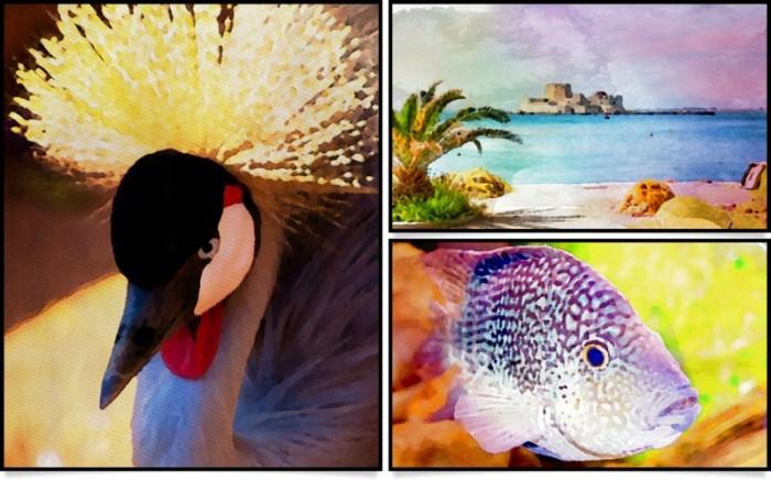 Aquarella Screenshot 05 f7incjn