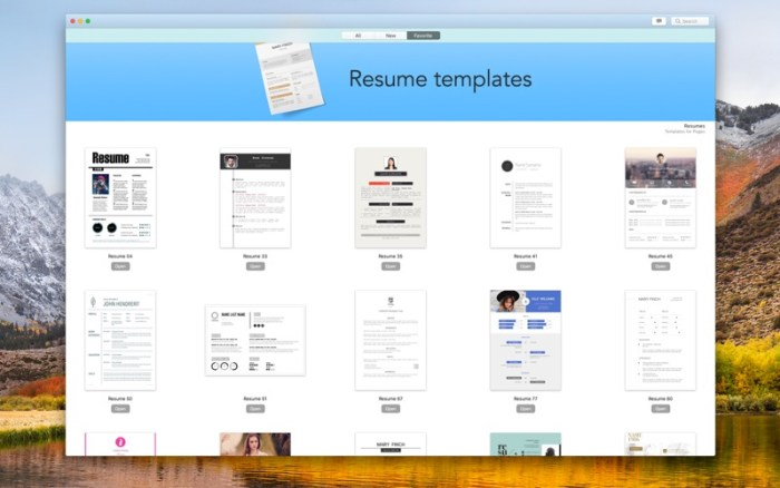 5_Resume_DesiGN_Templates.jpg