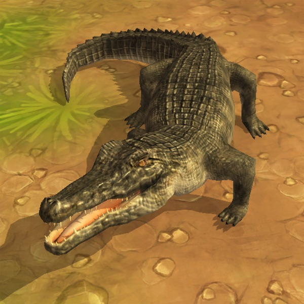 Crocodile Attack 3D