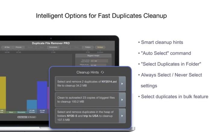 Duplicate File Remover PRO Screenshot 3 dlq1xkn