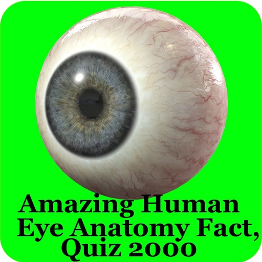Human Eye Anatomy Fact,Quiz 2k by Raj Kumar
