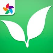 myPlants   Come gestire il tuo giardino con reminder personalizzati per non dimenticare le tue piante