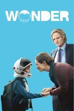 """Résultat de recherche d'images pour """"Wonder"""""""