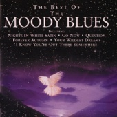 The Moody Blues - The Best of the Moody Blues  artwork