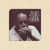 James Cotton - Mighty Long Time  artwork