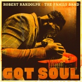 Robert Randolph & The Family Band - Got Soul  artwork