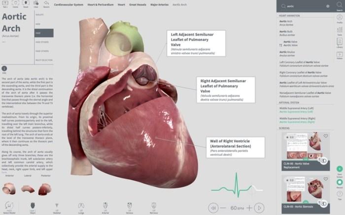 1_Complete_Heart.jpg