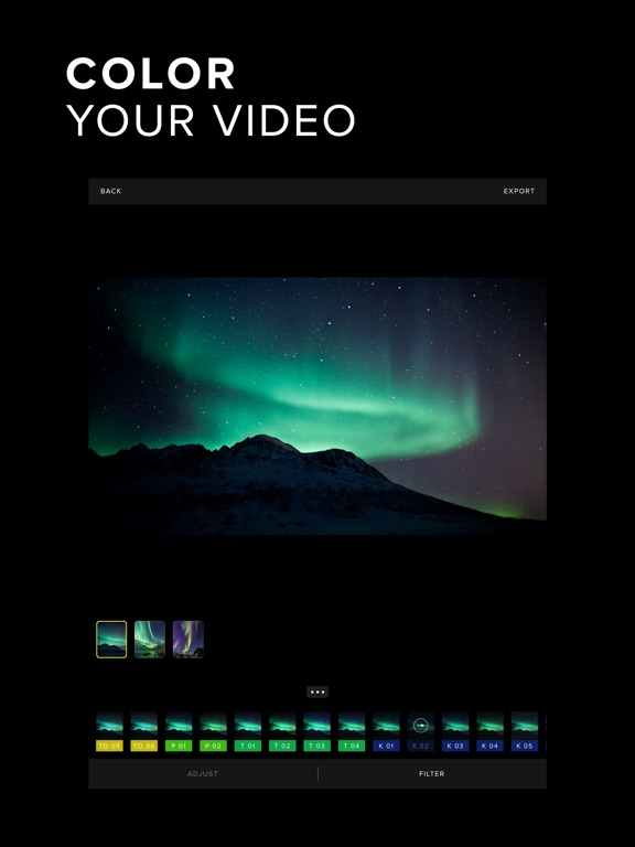 Carve Video Editor Screenshot