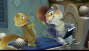 Squirrel's Zoo Animal Colors - Waterford's Rusty & Rosy and Friends
