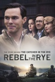 Danny Strong - Rebel In the Rye  artwork