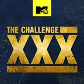 The Challenge: Dirty 30 - The Challenge: Dirty 30  artwork