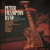 Peter Frampton - All Blues  artwork