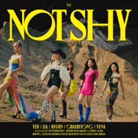 Download ITZY - Not Shy