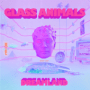 Glass Animals - Heat Waves mp3 download