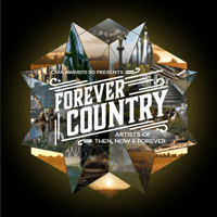 Download lagu Artists Of Then, Now & Forever - Forever Country