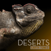Various Artists - Earth Tones: Deserts  artwork