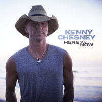 download lagu Kenny Chesney - Here and Now