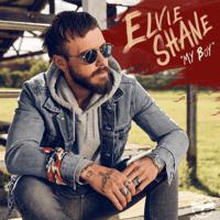 download lagu Elvie Shane - My Boy