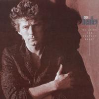 download lagu Don Henley - The Boys of Summer