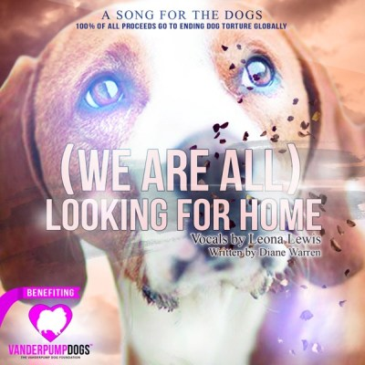 里欧娜 & DIANE WARREN - (We Are All) Looking for Home - Single