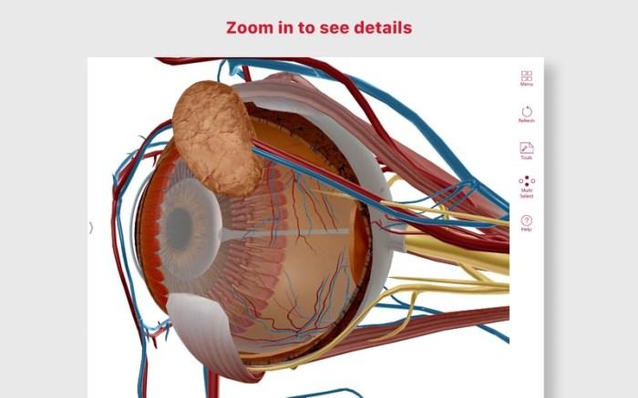 Anatomy & Physiology Screenshot 3