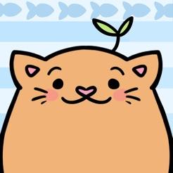 Meow Bounce