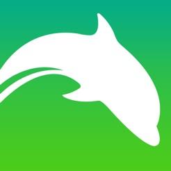 Dolphin browser für das iPad