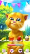 おしゃべり猫のトーキング・ジンジャー2スクリーンショット3
