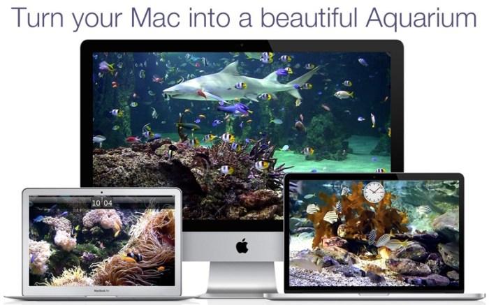 Aquarium Live HD+ Screensaver Screenshot 01 9wg6z1n