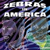 Zebras In America