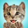 Fox and Sheep GmbH - Little Kitten - My Favorite Cat  artwork