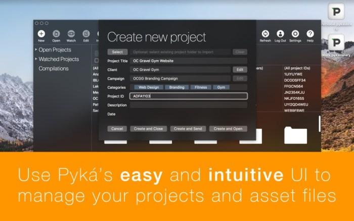 1_Pyká_Project_Manager.jpg