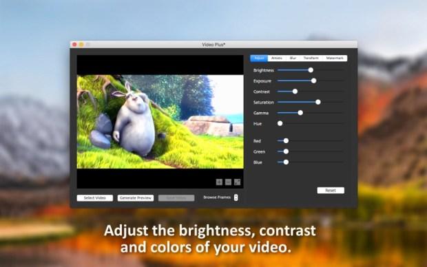 2_Video_Plus_Watermark_Videos.jpg