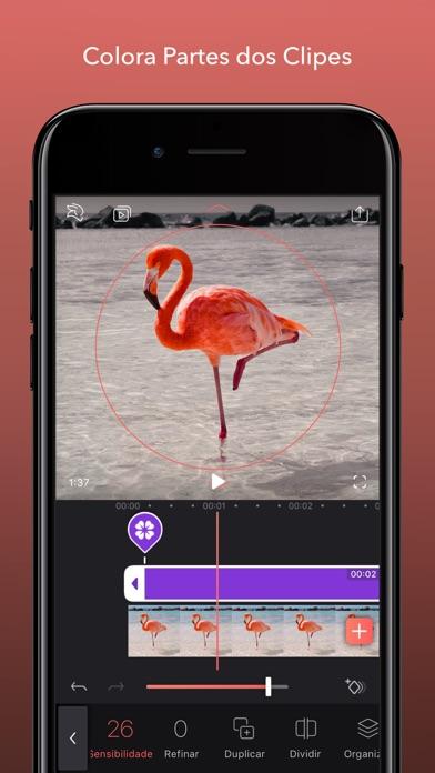 Screenshot do app Enlight Videoleap