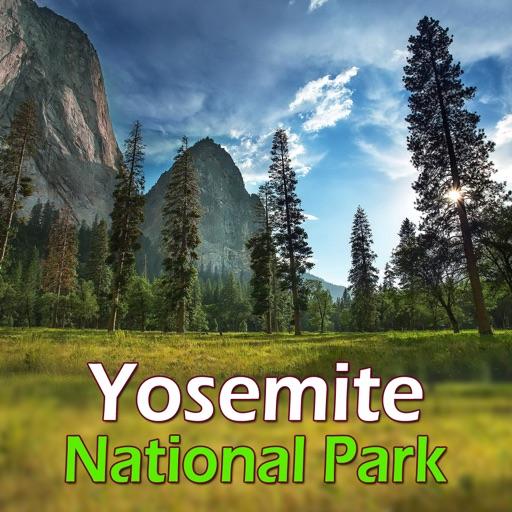 Yosemite National Park Guide