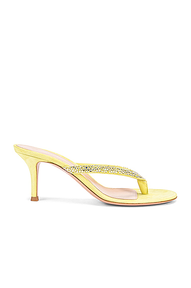 Gianvito Rossi Diva Flip Flop Sandals in Yellow. - size 39 (also in 36.5,37.5,38,38.5,39.5,40,41)