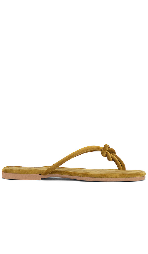 Seychelles Lifelong Flip Flop in Mustard. - size 10 (also in 6,6.5,7,7.5,8,8.5,9,9.5)