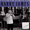 Harry James - Best of the Big Bands  artwork
