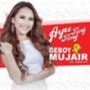 Ayu Ting Ting - Geboy Mujair