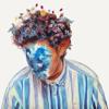 Hobo Johnson - The Fall of Hobo Johnson  artwork