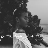 Download lagu AGNEZ MO - Promises