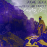 Akae Beka - Everything Bless (feat. Tiken Jah Fakoly)