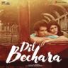 A. R. Rahman - Dil Bechara