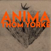 Thom Yorke - Dawn Chorus
